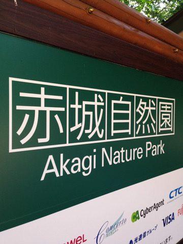 赤城自然園でヤナギランを見る